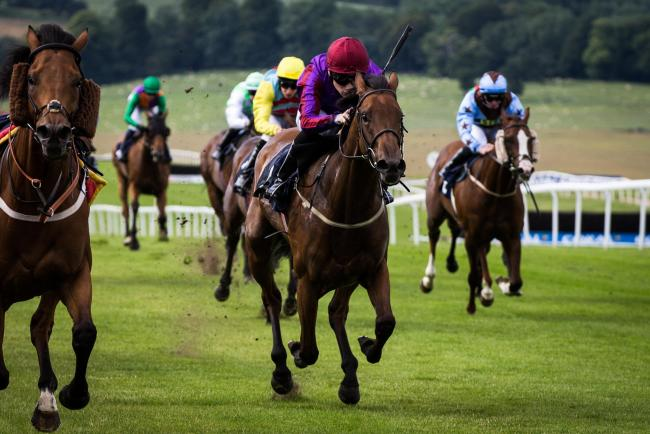 TOP ACTION: Jungle Juice wins at the last Chepstow meeting a riderless horse on the left keeping him company