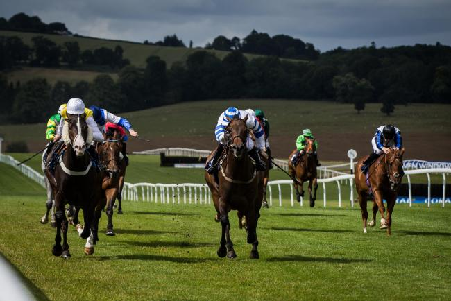FINE RIDE: Aquadabra (left) at Chepstow last week, another winner for in-form Chris Mason