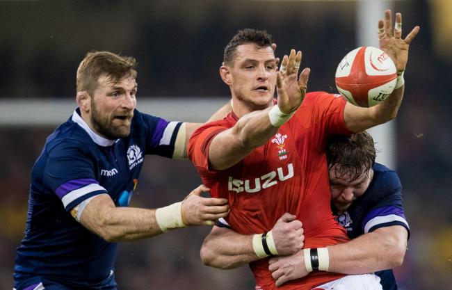 CONTENDER: Flanker Aaron Shingler is aiming to make a late charge to Wales' World Cup squad