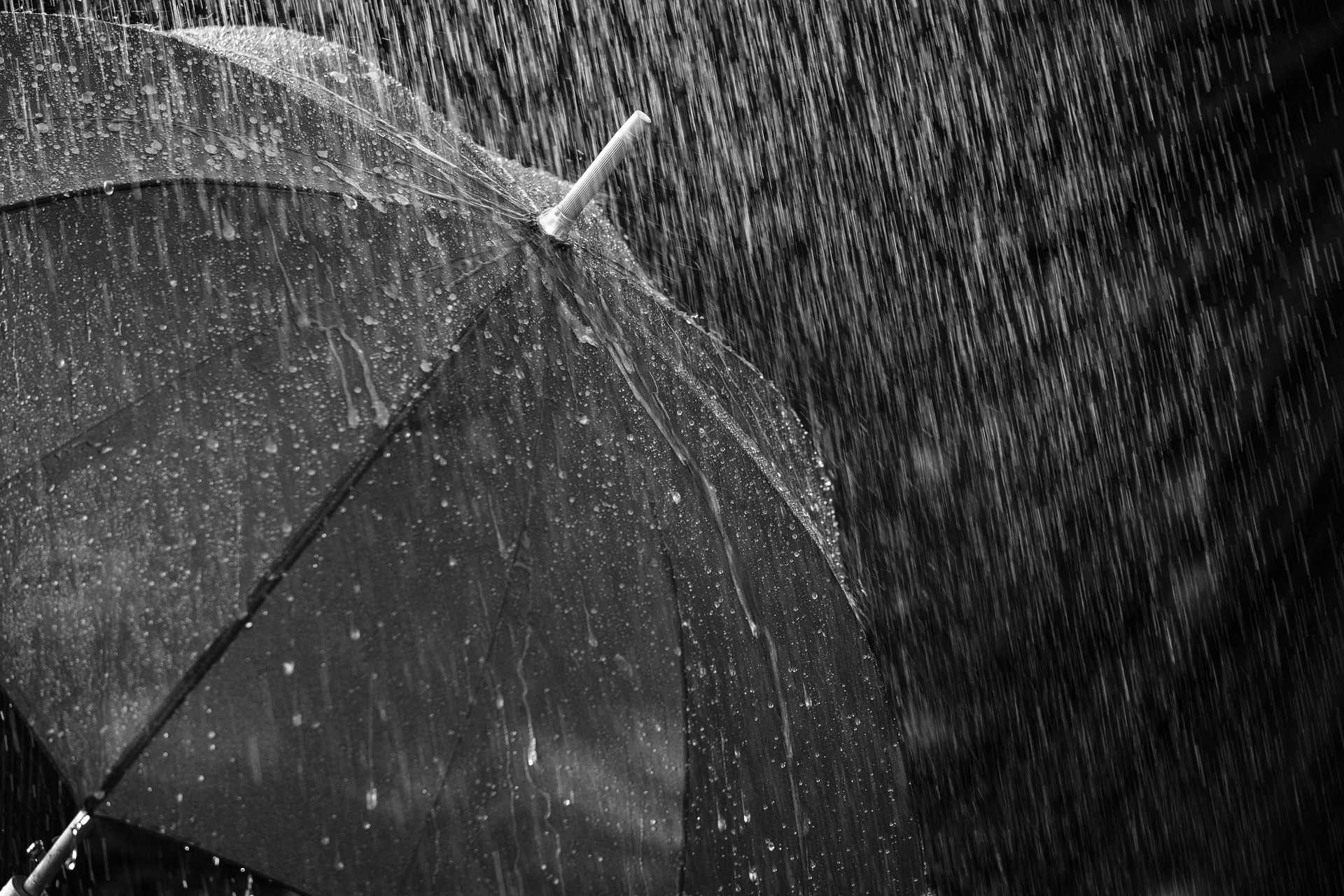 Gwent weather to be wet going into the weekend, says Met Office as warnings issued