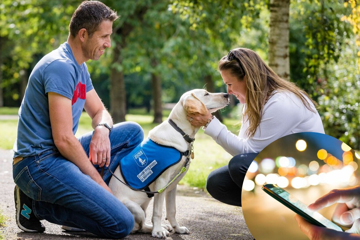 Guide Dogs: mobile phones and social media affecting our powers of description