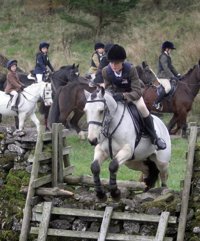 Craven and Pendle Forest hold a Pony Club Trail Hunt . Picture shows a junior member clearing a fence..