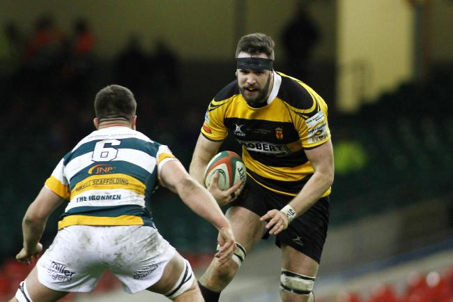 A-HA! HE'S BACK: Dan Partridge returns for Newport at Parc y Scarlets