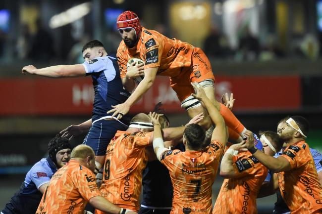 Dragons to step up lock hunt after Hill return to Cardiff Blues
