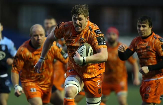 STALWART: Dragons lock Matthew Screech's form deserved a Wales call-up, says Andrew Coombs