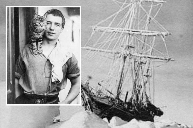 Perce Blackborow, the Newport sailor who was a stowaway on Sir Ernest Shackleton's ship, Endurance, during an expedition to Antarctica. He is pictured here with ship's cat Mrs Chippy.