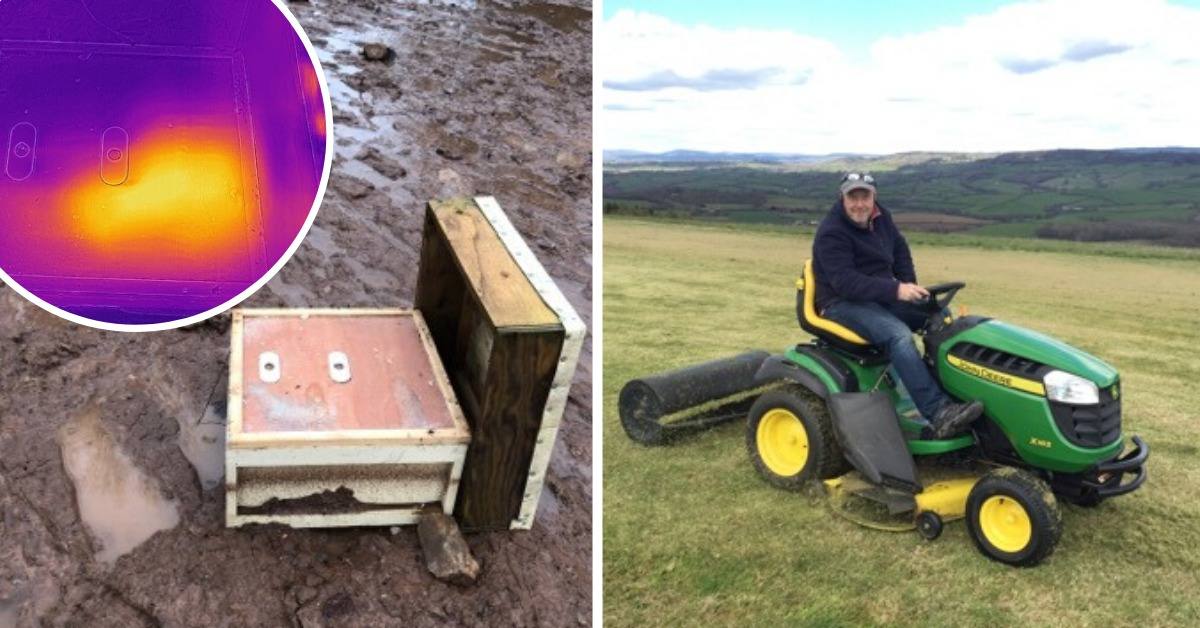 Beekeeper astonished to find bees had survived flood