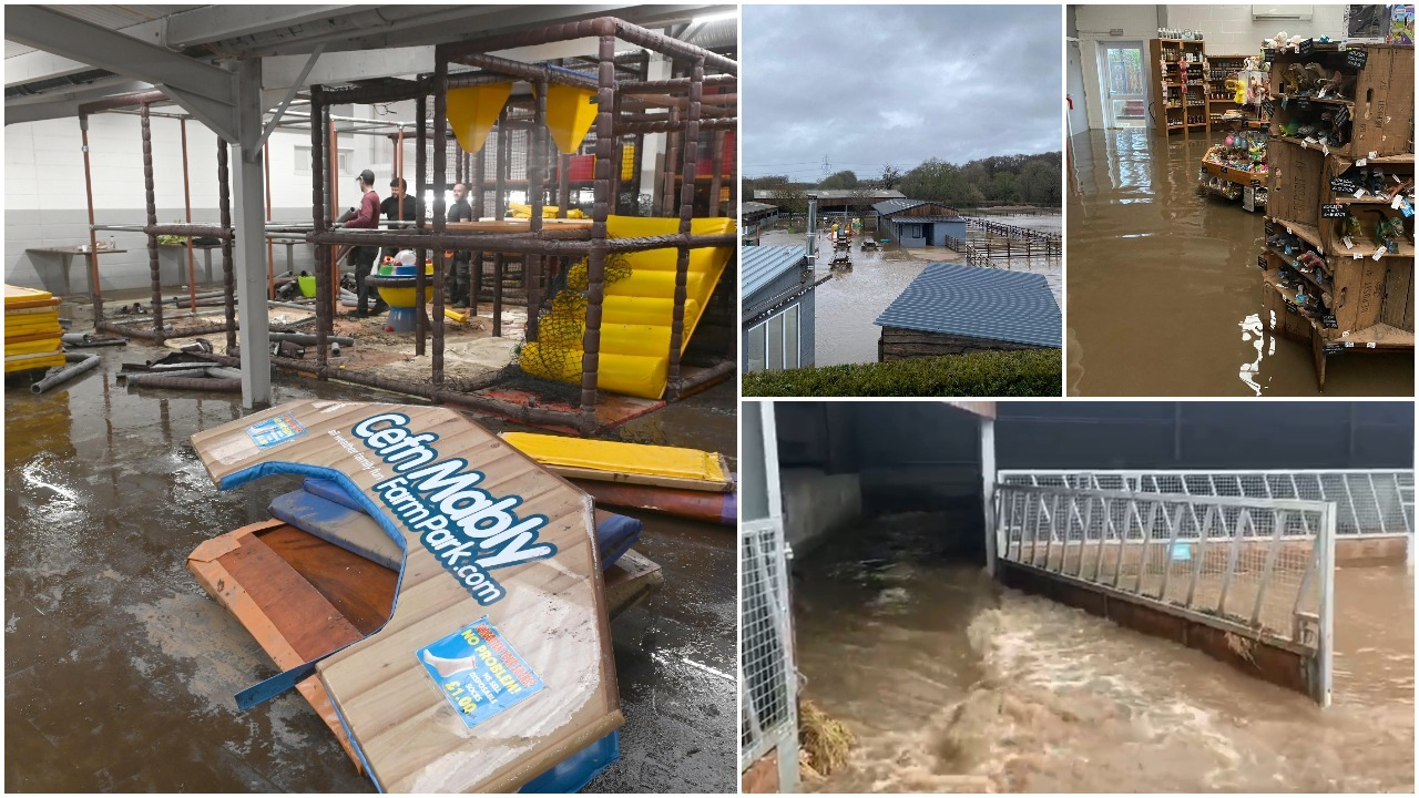 'It came right through like a river' - popular farm park facing year-long closure after flood