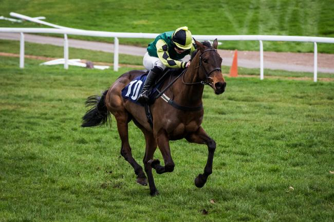 QUALITY: Lisnagar Oscar, seen winning at Chepstow last year, is being aimed at the Stayers' Hurdle at Cheltenham