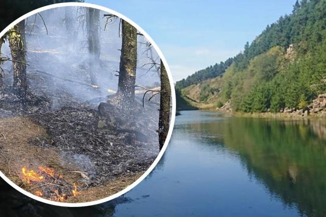 Forestry around the Blue Lagoon was deliberately set on fire, police say. Picture, right: Kirsty Young