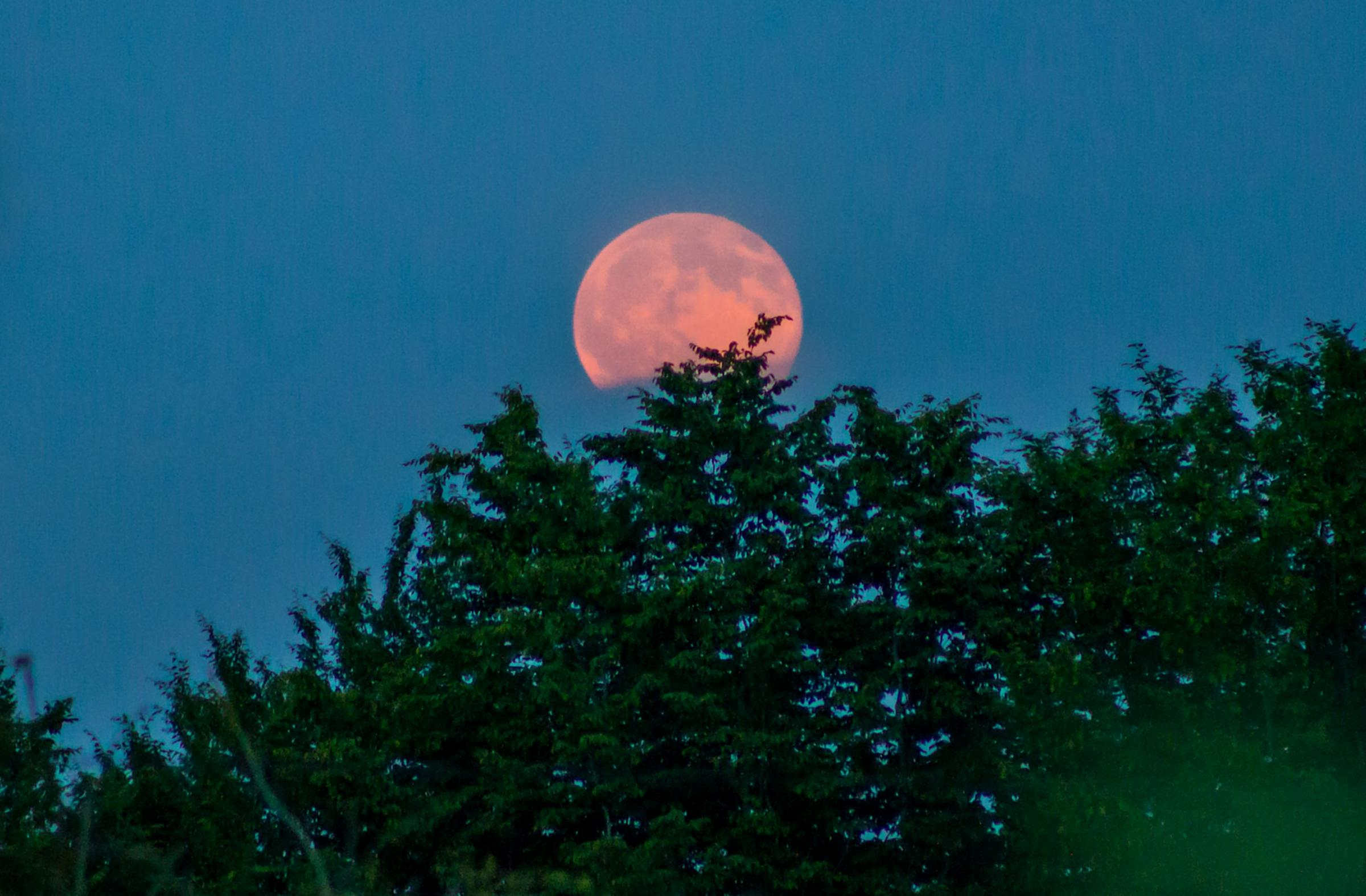 Biggest super moon of the year to light up sky tonight - best time ...