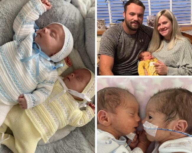 Two sets of twins and a Dragon's baby welcomed to the world