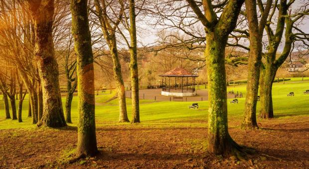 South Wales Argus: Bright: Winter sun, Pontypool Park, taken in early December by Julie Morgan, of the South Wales Argus Camera Club.