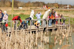 South Wales Argus: FUN DAY OUT: Youngsters enjoying Newport's Wetlands