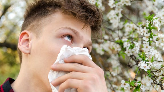Met Office share 'good news' if you suffer from hay fever
