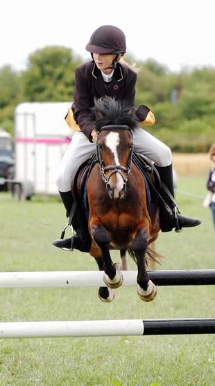 South Wales Argus: Kirsty Poulton heading for a clear round on Ben Hur III at the Slimbridge Horse and Dog Show