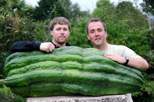 SECURTIY: The Fortey brothers and their record-breaking marrow