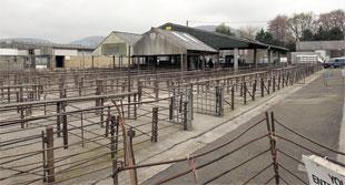 REDEVELOPMENT: The cattle market site in Abergavenny