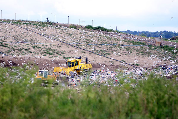 Three councils meet landfill waste targets