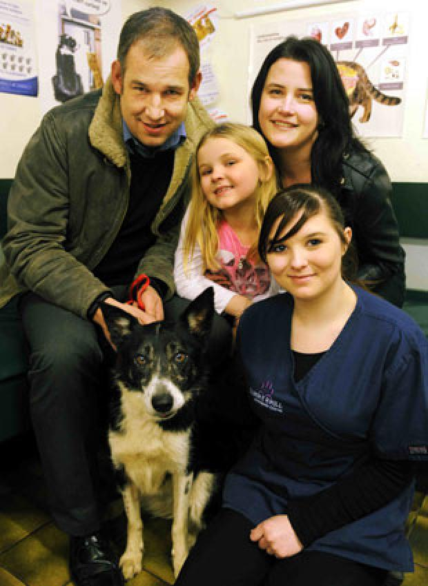 WELCOME BACK: Border Collie Seren with her owners Paul Roden, Elli Young, mum Julie and nursing assistant Laurie Gettings at Summerhill Vets in Newport
