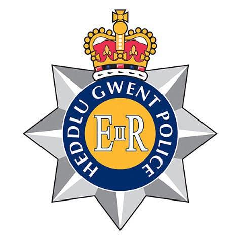 Two arrested over Newport burglary
