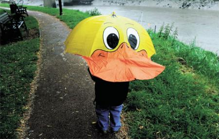 GOOD WEATHER FOR DUCKS: Young Dan Merrett shelters from the rain as he makes his way