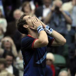 Andy Murray celebrates after beating Novak Djokovic in the semi-finals