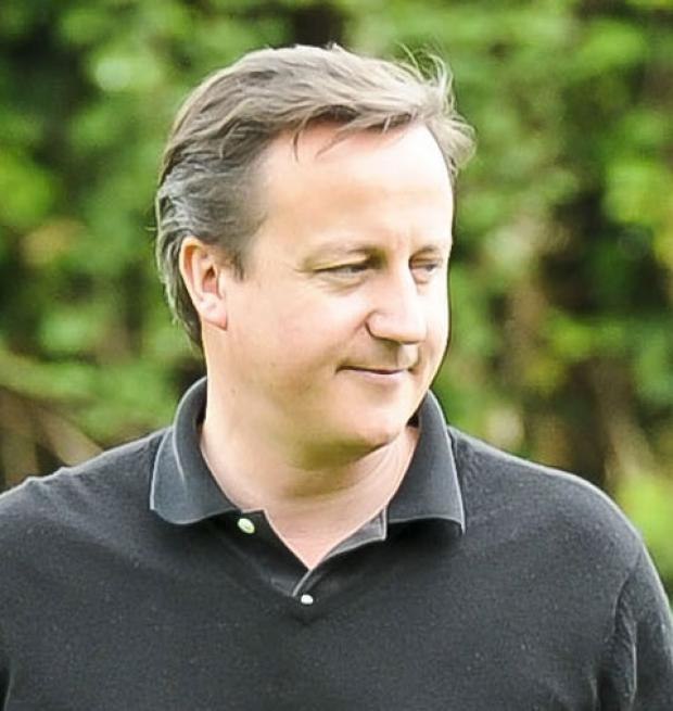 PRESSING AHEAD: David Cameron