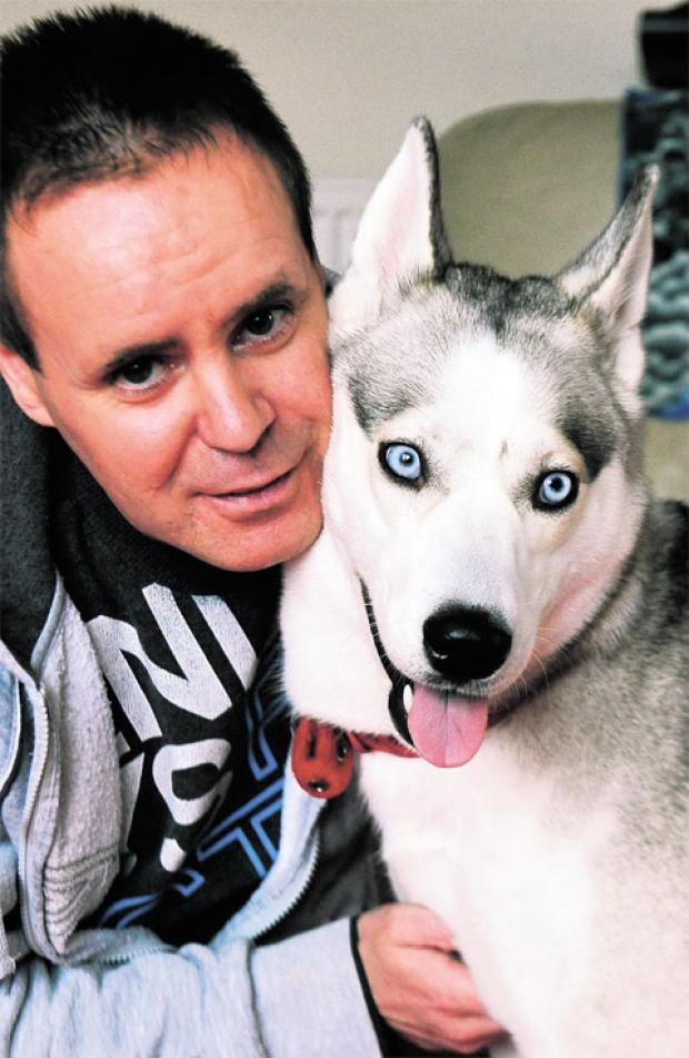 MILO AND ME: Darren Stone with Milo, his Siberian Husky, whose Youtube video of her 'talking' has had more than 1,000 hits
