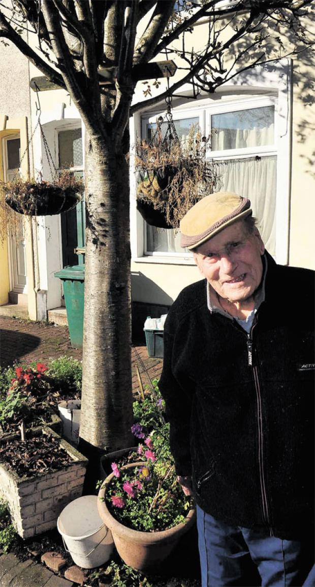 South Wales Argus: HONOURED: Arthur Collett, 90, of Argyle Street, Crindau, with the ash tree he decorates