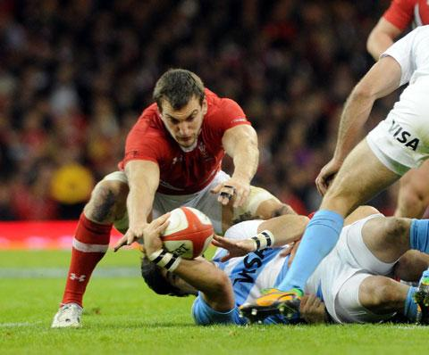 STILL CLASS: Wales flanker Sam Warburton will soon be back on top form