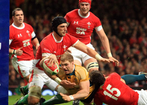 WORLD CLASS: Australia's superstar No7 David Pocock is no stranger to scoring tries at the Millennium Stadium