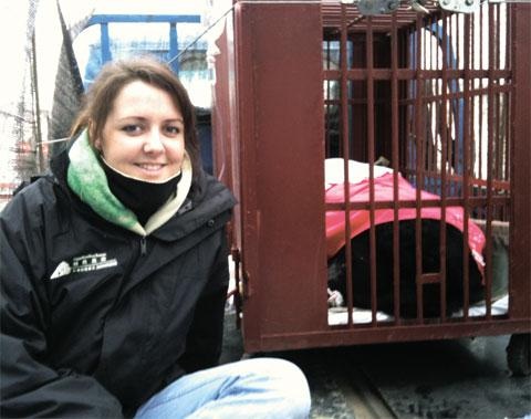 HELP MISSION: Adina Valentine has gone to China to care for rescued bears