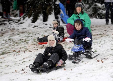 Sledging fun in Belle Vue Park, Newport