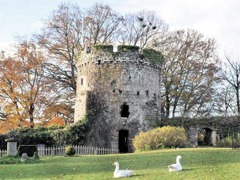 USK CASTLE: Owners want to make improvements to facilities