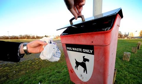 Blaenau Gwent set for UK's highest dog mess charges