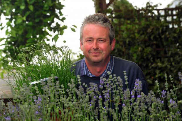 South Wales Argus: IT'S THE WEEKEND: Our Garden Guru Rob Williams of The Secret Garden, Mamhilad, answers your questions