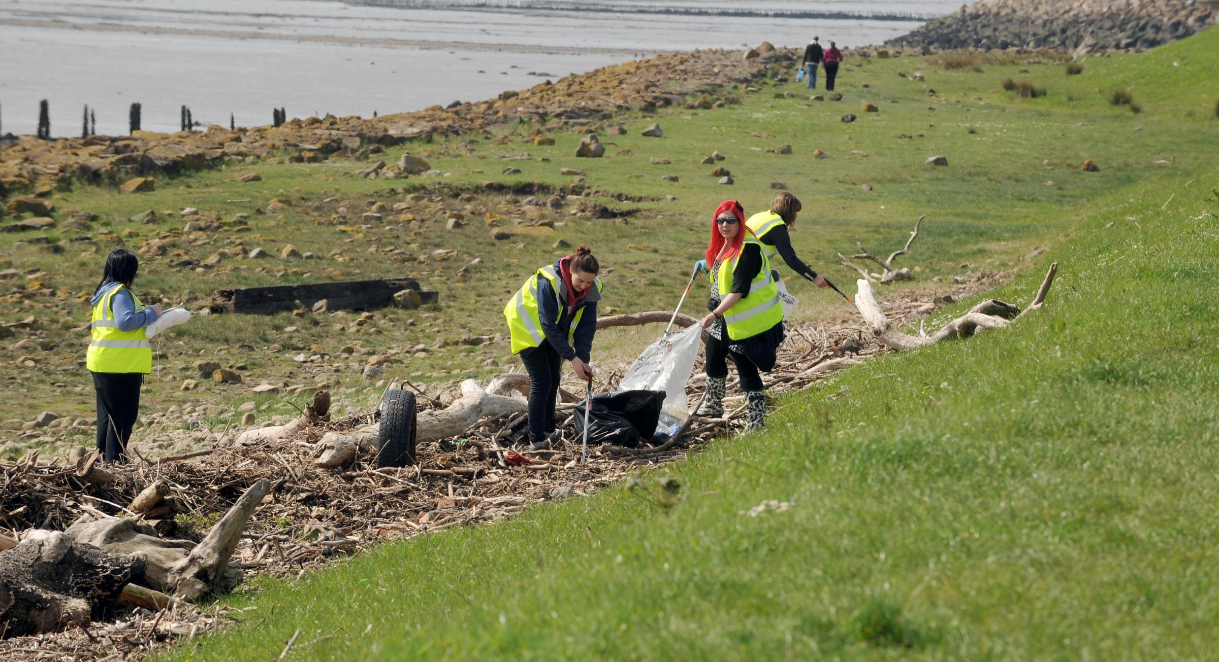 Volunteers get involved in beach clean up