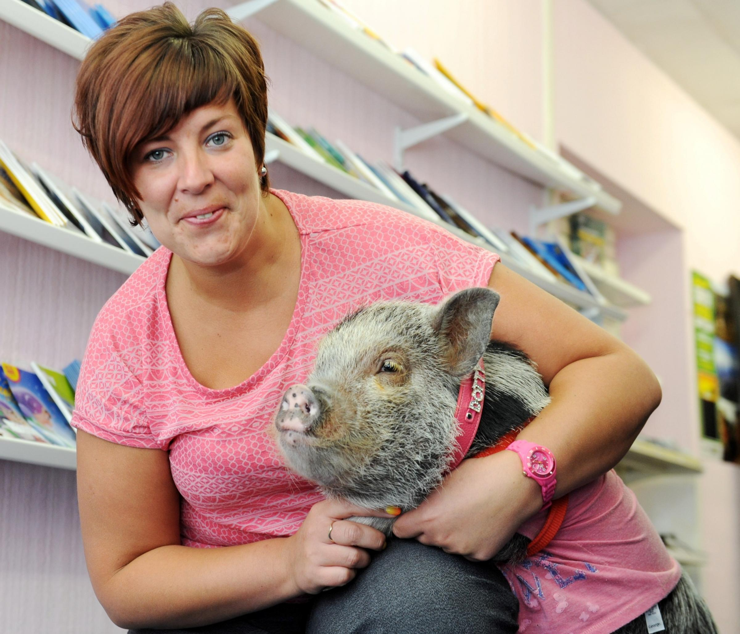 Woman's pet pig is star of her office