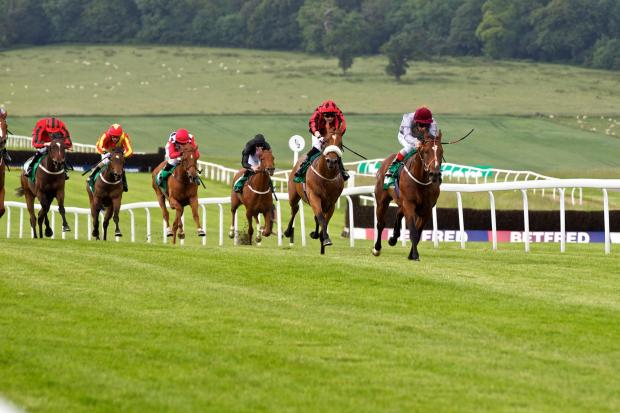 SECOND: Union Rose (second right) finishes runner-up at Chepstow