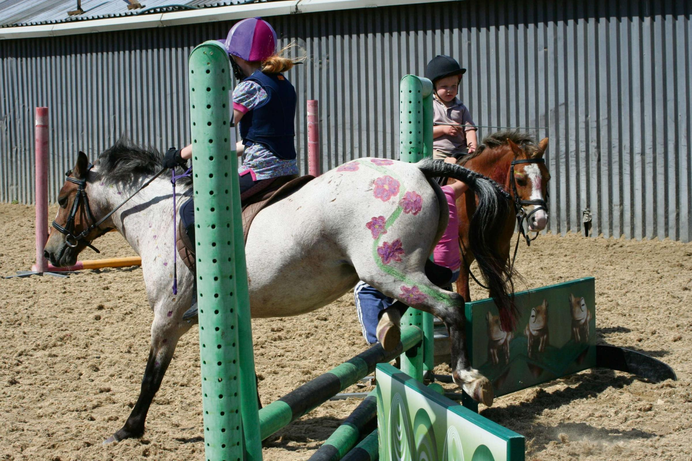 IT'S THE WEEKEND: Family fun - Pony club sessions in Chepstow for your little riders