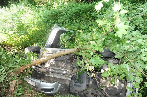 Newport taxi crashes into ravine
