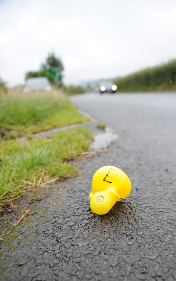 UPDATED: 300 duck race entries on road drive motorists quackers in Llanellen