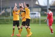 HIGH FIVES: The County under-18s boys celebrate one of eight goals against Taffs Well last Sunday