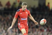 TARGET: Rhys Priestland was jeered by some Wales fans