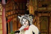 Argus reporter Francesca Gillett tries work experience on Panto at the Riverfront theatre.  Pictured is Francesca on stage playing the character Tommy the Cat from Dick Whittington.  (14808491)