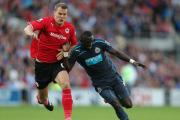 PREMIER PUSH: Cardiff City defender Ben Turner, seen here tussling with Newcastle's Papiss Cisse last season, believes the Bluebirds can return to the Premier League