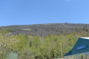 BEHIND THE HEADLINES: Grass fires in Gwent