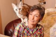 Denise Selway runs Vale Cat Rescue which takes in neglected cats and rehomes them, due to her ill-health and rising vet bills, she canÕt keep running the rescue centre from her Ebbw Vale home so needs people to help rehome 70 cats (26977437)