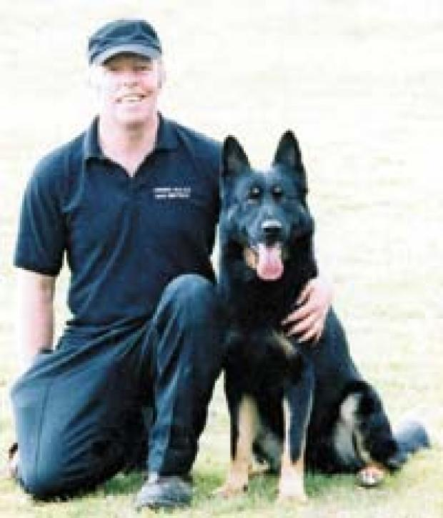 clamour to save police dog saxon from south wales argus